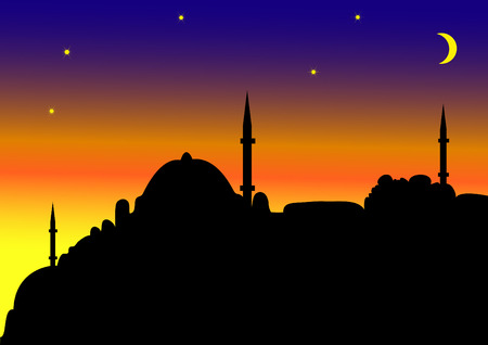 place of worship: Islamic city by night
