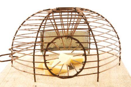 mousetrap: mouse-trappola con il formaggio all'interno  Archivio Fotografico