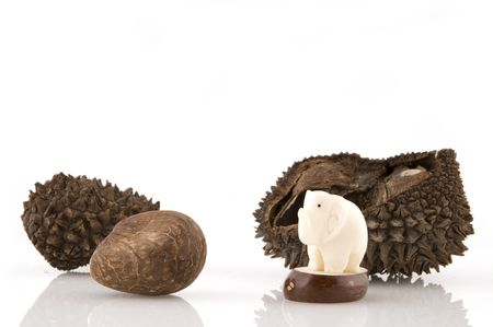 A white elephant made from vegetable ivory Stock Photo - 2940367