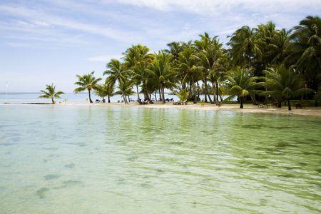 isola tropicale, con palme e località