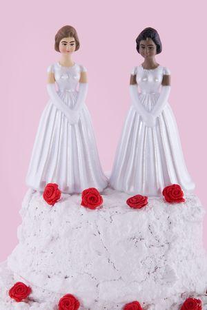 mariage mixte: deux �pouses lesbiennes � une journ�e de mariage  Banque d'images