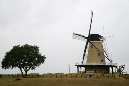 Dutch windmill with tree Stock Photo - 3297569
