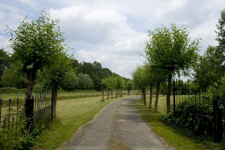 entranceway: entranceway with fence and willows