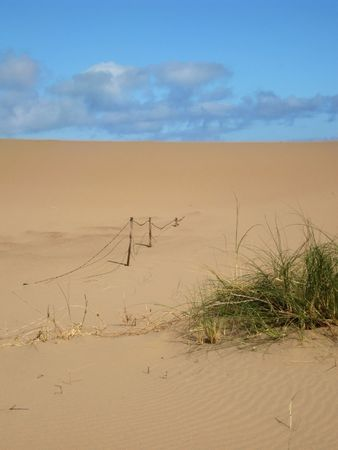 sobriety: sand dunes with grass Stock Photo
