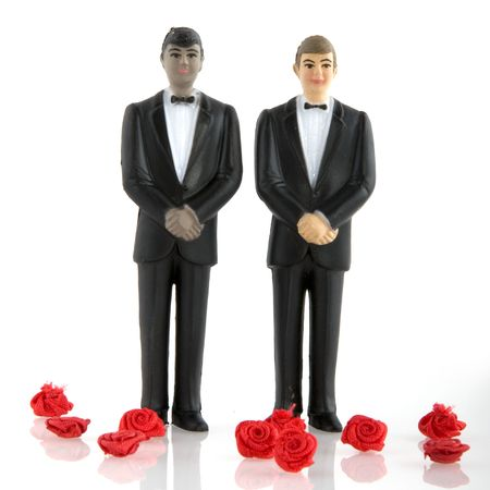 gay marriage: Gay wedding with man in tuxedo