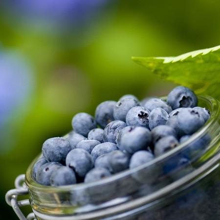 Blue berries outdoor in the garden Stock Photo