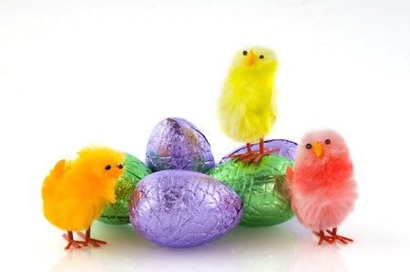 Easter eggs and colored chickens photo