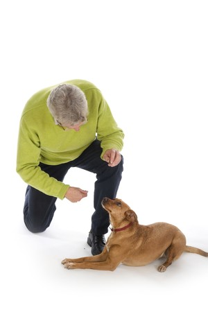 anima: Man is training his dog obedience