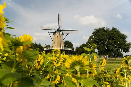 Windmill at Soest in Holland Stock Photo - 4069699