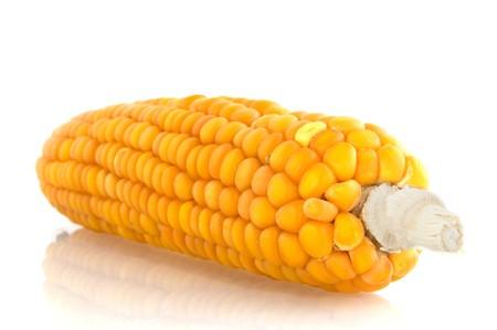 corncob: raw corncob isolated over white