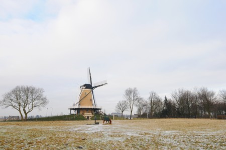 Winter in Holland with windmill and horse in the snow photo