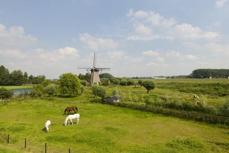 Windmill the Hoop in Zuilichem Holland photo