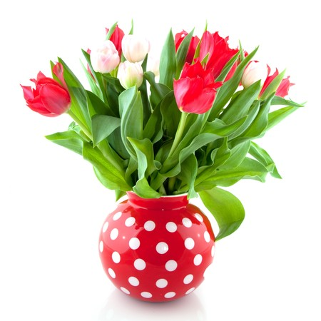 speckles: Red and white tulips in speckles vase