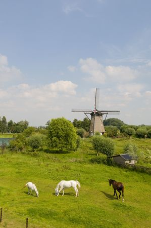 windmill the Hoop in zuilichem Holland Stock Photo - 4635111