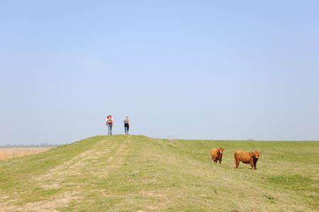 couple is walking in nature with Scottish Highlander Stock Photo - 5083861