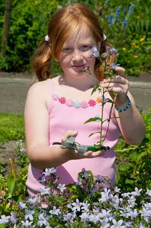 plucking: Girl is plucking flowers in the garden