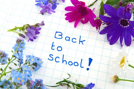 Forget me not to go back to school photo