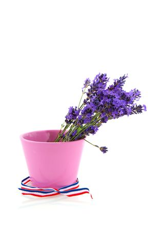 Bouquet Lavender from the Provence in pink flower pot isolated over white photo