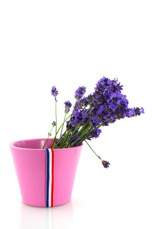 Bouquet Lavender in pink flower pot with French flag photo