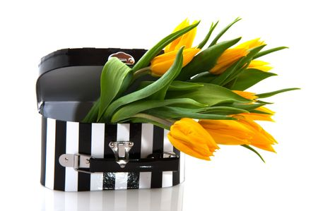 black and white suitcase with yellow tulips Stock Photo - 5834568