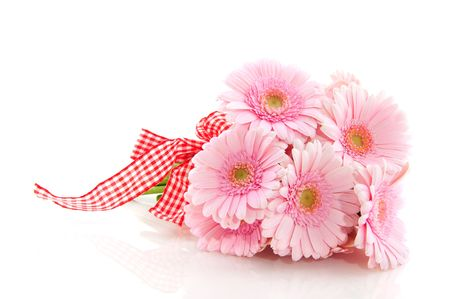 bouquet: Pink Gerber bouquet with checkered ribbon and white background Stock Photo
