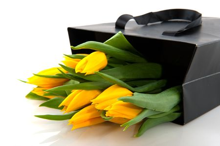 Yellow tulips in black paper bag with white background photo