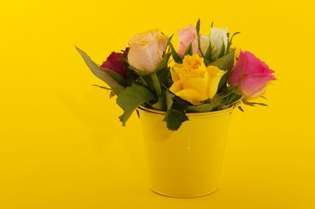 Bouquet many colorful roses on yellow background Stock Photo - 5919724