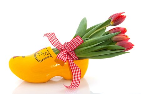 Dutch national products with clogs and tulips Stock Photo - 5919722