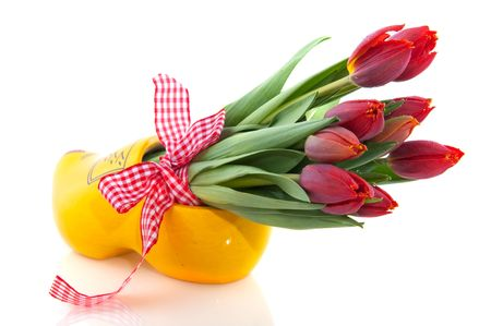 Dutch national products with clogs and tulips Stock Photo - 5919747