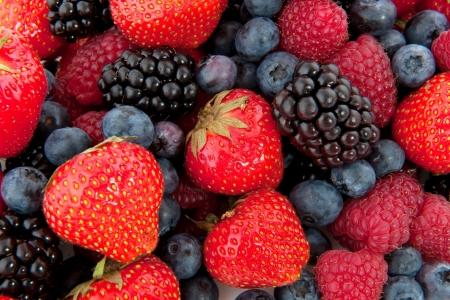 frutillas: Diversidad forestal fresca fruta completa como un fondo