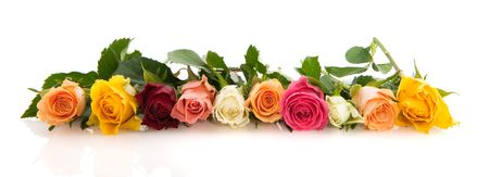 Garland from colorful roses isolated over whote Imagens