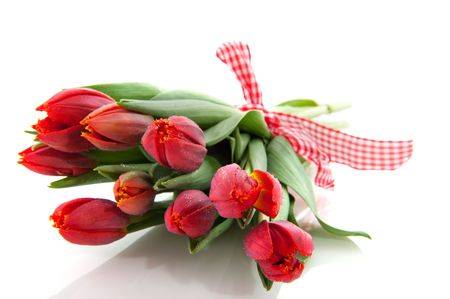 bouquet fresh red tulips with checkered ribbon photo