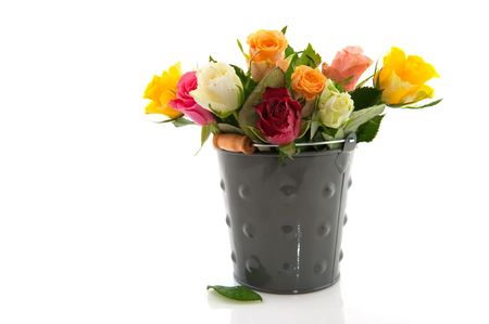 gray backgrund: Bouquet colorful roses in gray bucket and white backgrund