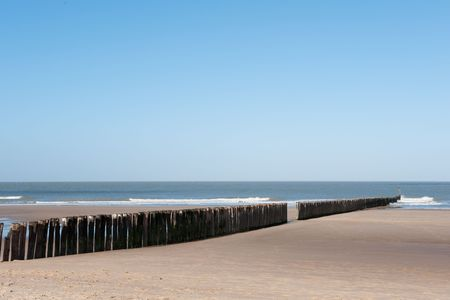 zeeland: Beach in Holland with wave breaker from wooden poles