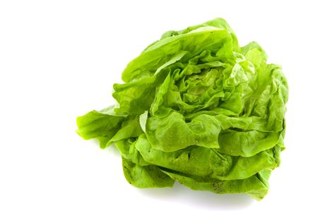 butterhead lettuce or  salad isolated over white photo
