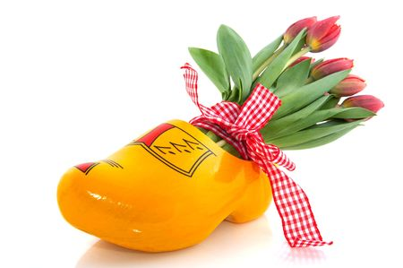Dutch national products with clogs and tulips Stock Photo - 6087140
