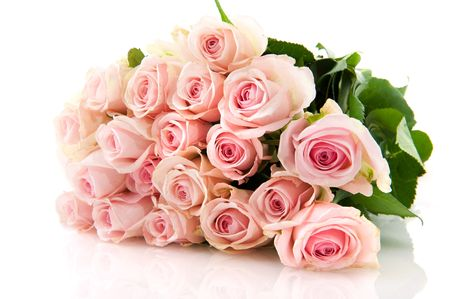 Bouquet pink roses in bunch isolated over white photo