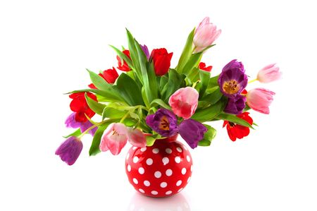 spotted flower: colorful tulips in red speckles vase isolated over white Stock Photo