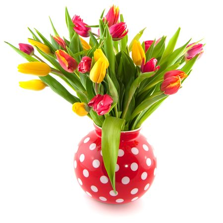 mixed flower bouquet: colorful tulips in red speckles vase isolated over white Stock Photo