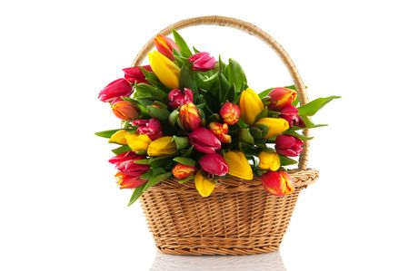 Basket filled with colorful bouquet of fresh tulips photo