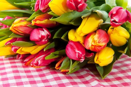 bouquet tulips in spring on checkered background photo