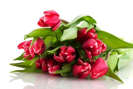 bouquet of colorful tulips in spring isolated over white Stock Photo - 6170811