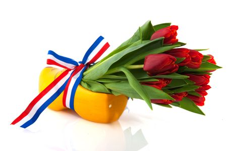 Dutch tulips wooden clogs and flag ribbon Stock Photo - 6351588