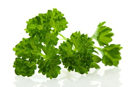 Fresh green parsley herbs for the kitchen photo