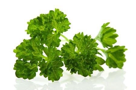 perejil: Perejil verde de hierbas para la cocina