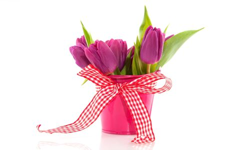 Pink tulips in bucket for spring with checkered ribbon photo