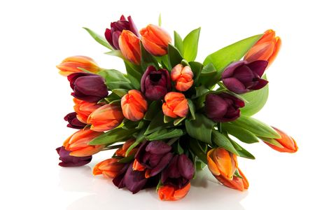 cheerful bouquet with mixed colored tulips in orange and dark red Stock Photo - 6370501