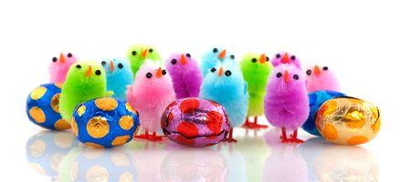 pollitos: una fila de coloridos poco pollitos de Pascua con huevos de chocolate