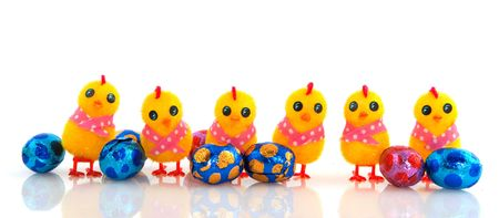 A row with funny yellow easter chicks with chocolate eggs photo