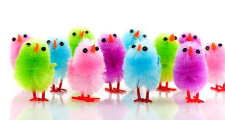 pollitos: una fila de coloridos poco pollitos de Pascua  Foto de archivo